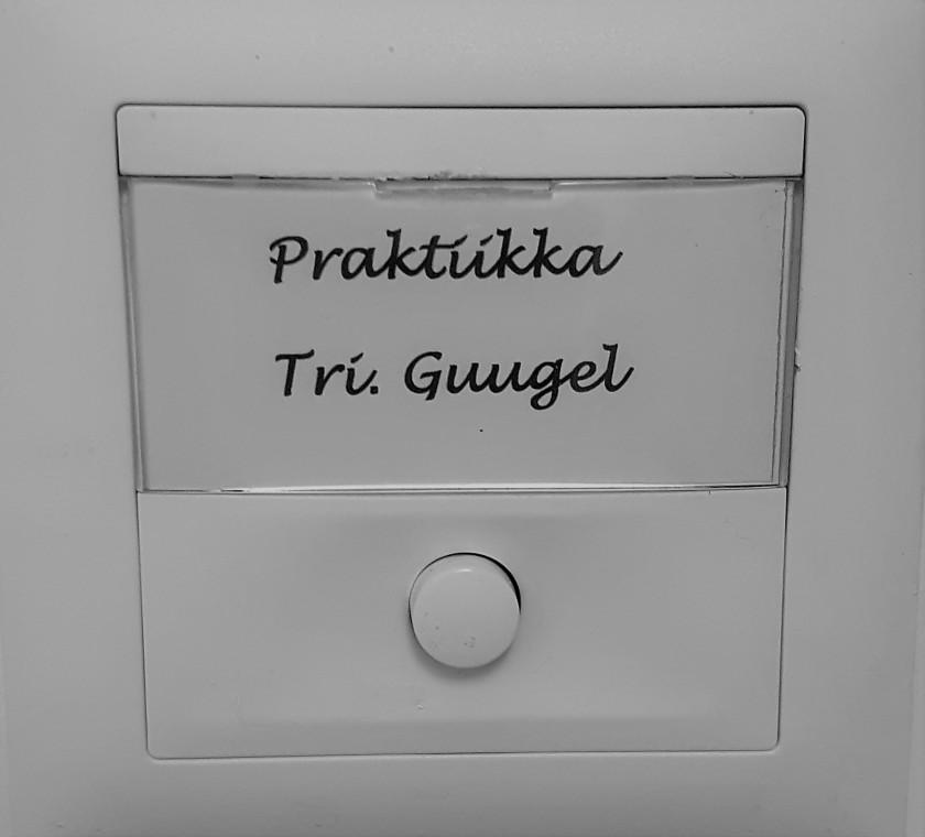 Tohtori Guugel