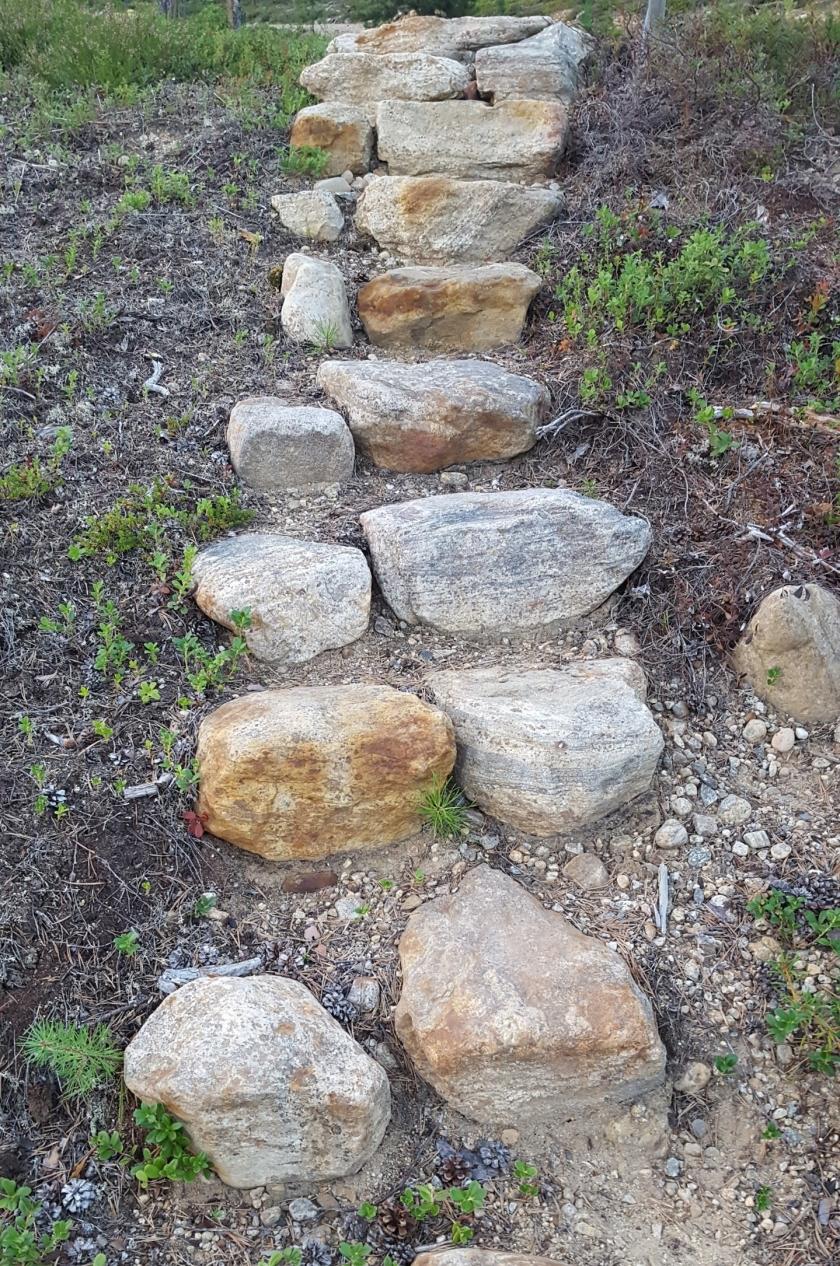 Kiviä rivissä